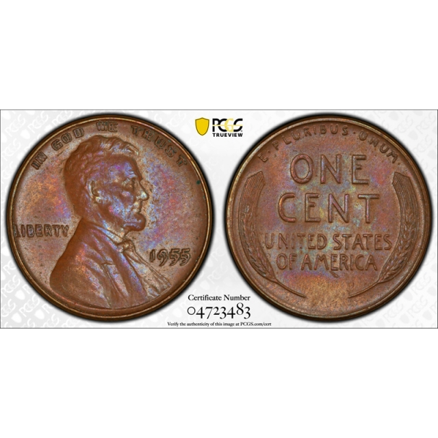 1955 Double Die Obverse Lincoln Cent PCGS MS 62 BN Uncirculated 1955/1955 Toned !