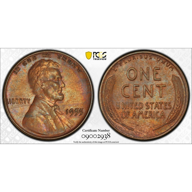 1955 Double Die Obverse Lincoln Cent PCGS AU 53 1955/1955 DDO Toned Nice !