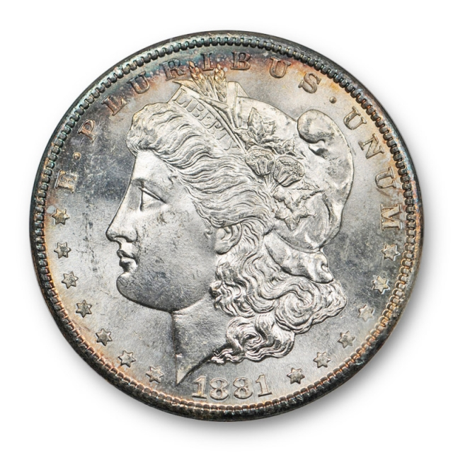 1881 S Morgan Dollar NGC MS 65 Uncirculated Old Fatty Toned Undergraded ! Cert#2027