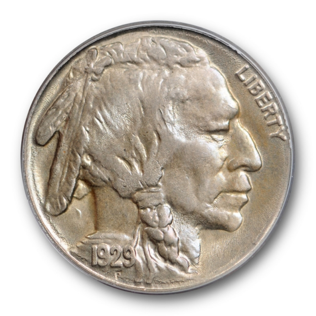 1929 S 5C Buffalo Nickel PCGS MS 64 Uncirculated OGH Toned Undergraded !