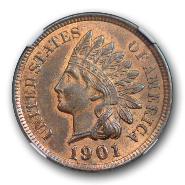 1901 1c Indian Head Cent NGC MS 63 RB Uncirculated Red Brown Common Date