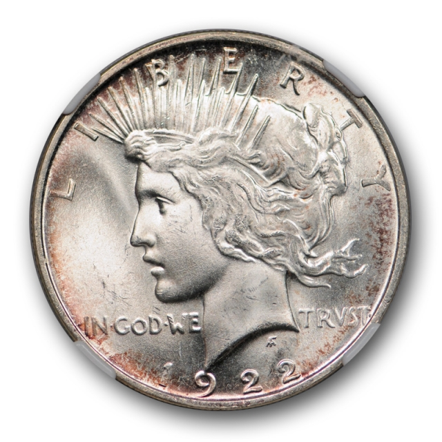 1922 D $1 Peace Dollar NGC MS 66 Uncirculated Lightly Toned Attractive Denver Mint